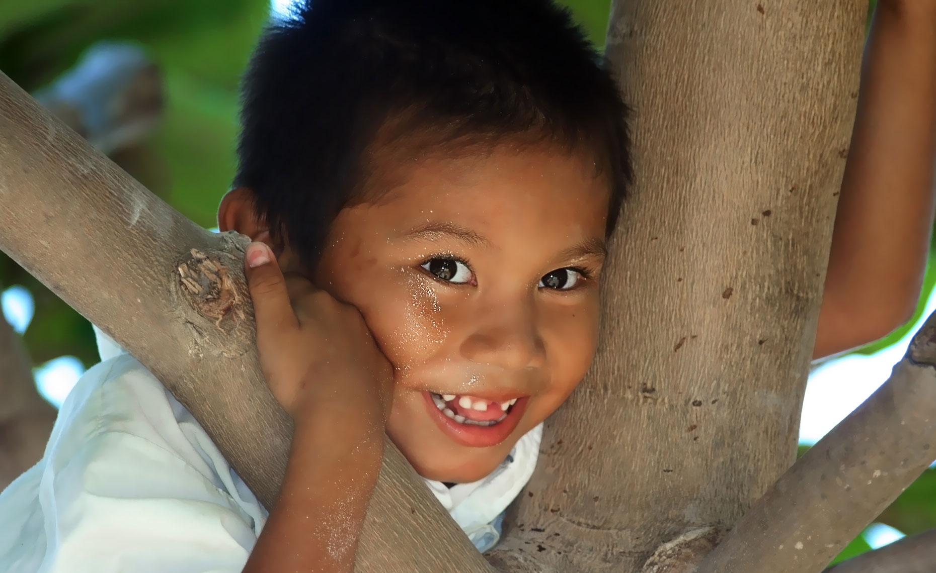 belize-boy-in-tree.jpg