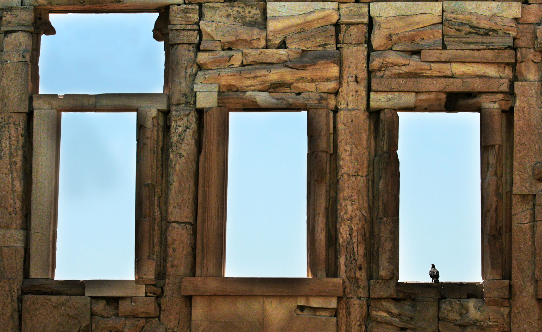 bird-in-window-at-acropolis.jpg