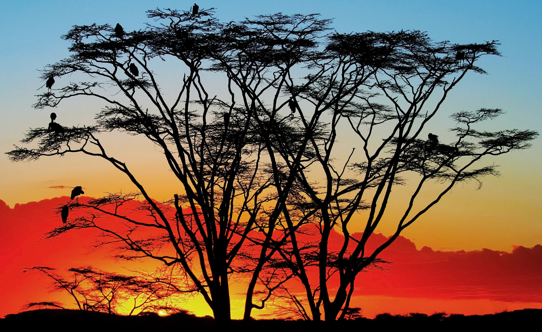 serengeti-sunset.jpg